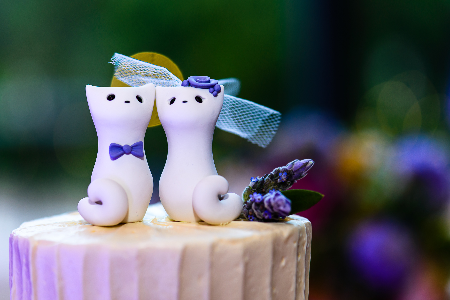 Austin-Wedding-Photographer-Barr-Mansion-cake-topper-cats-cute