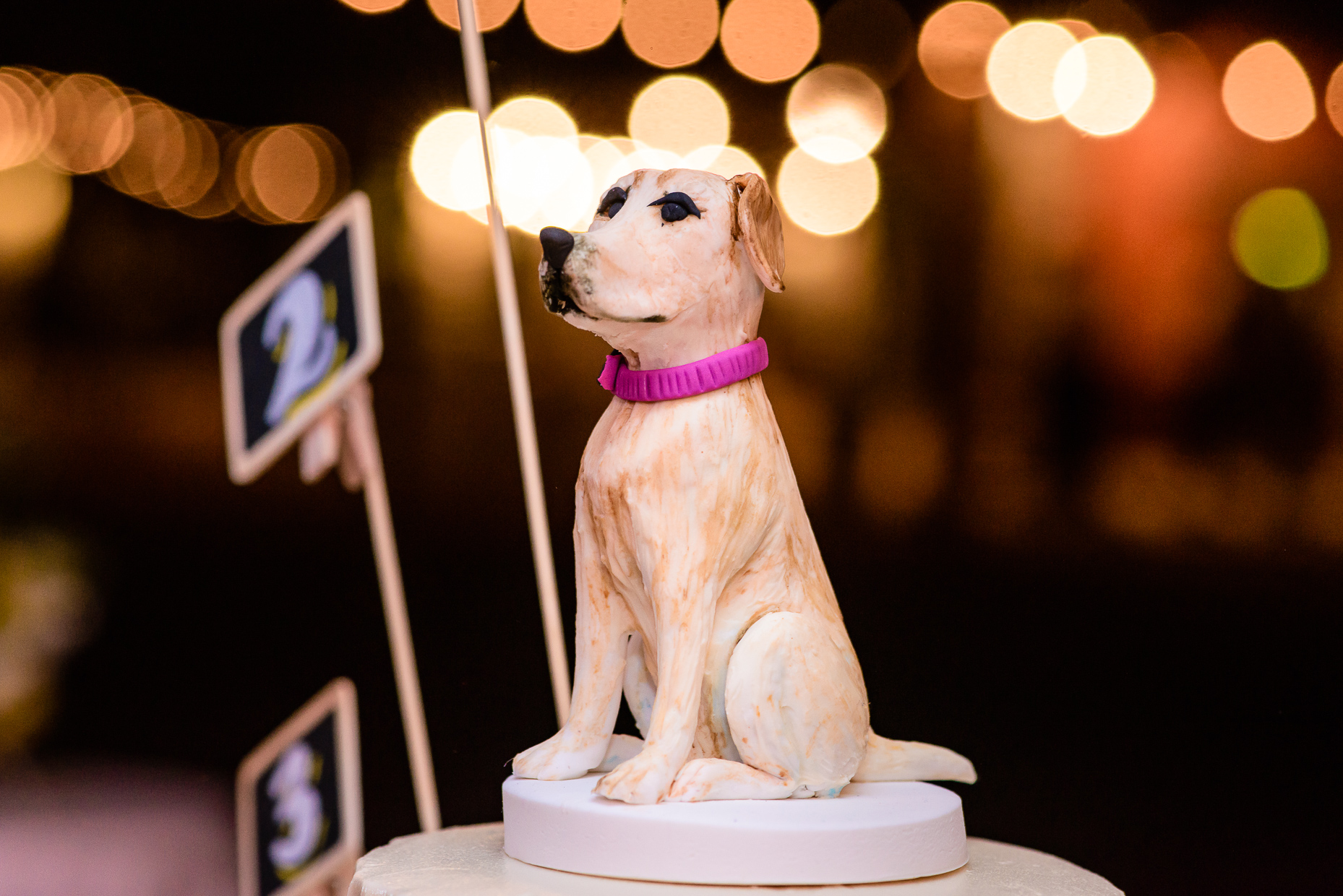 reception-details-cake-topper-dog-yellow-lab-austin-wedding-photographers