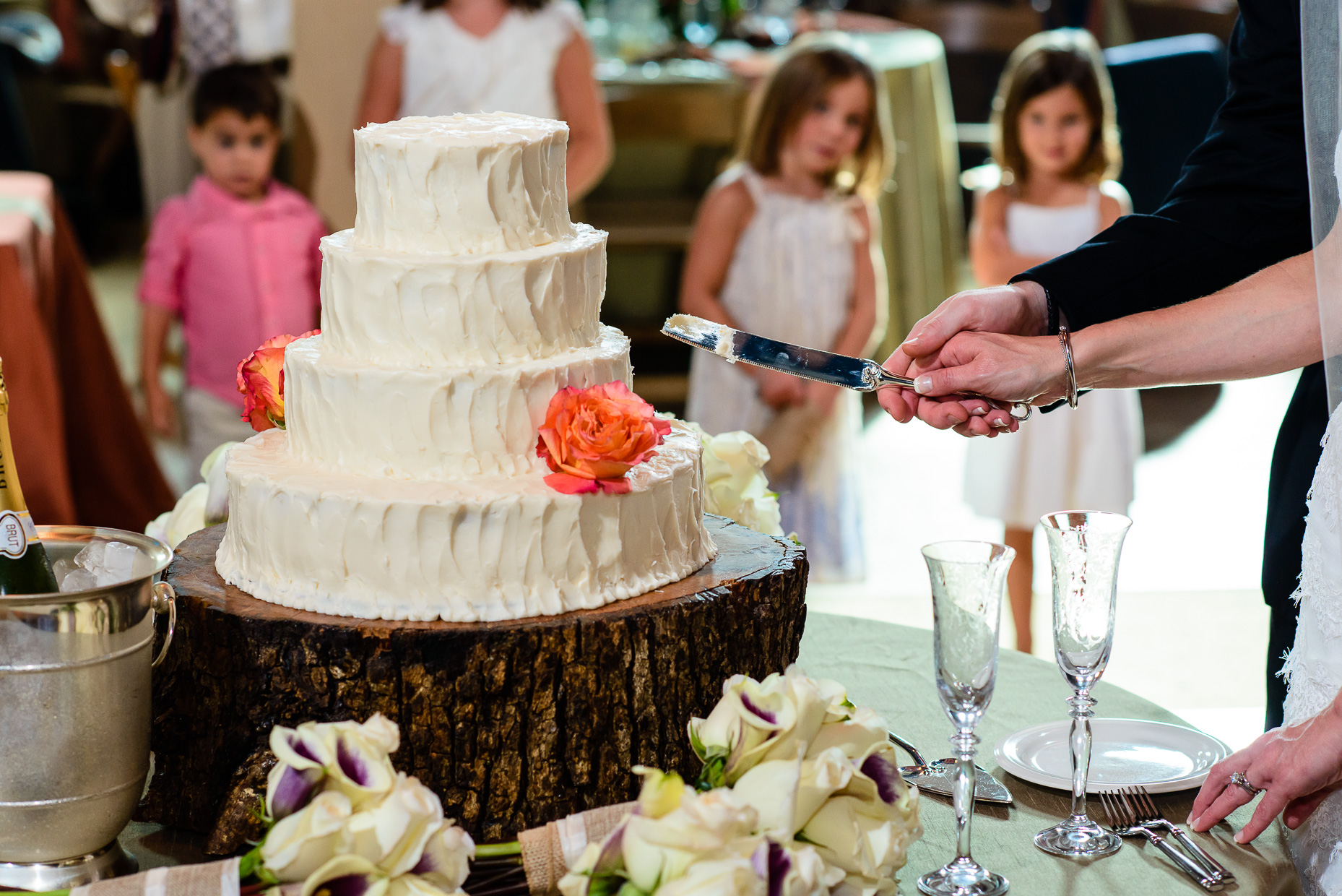 Austin-Wedding-Photographer-cake-cutting-children-knife