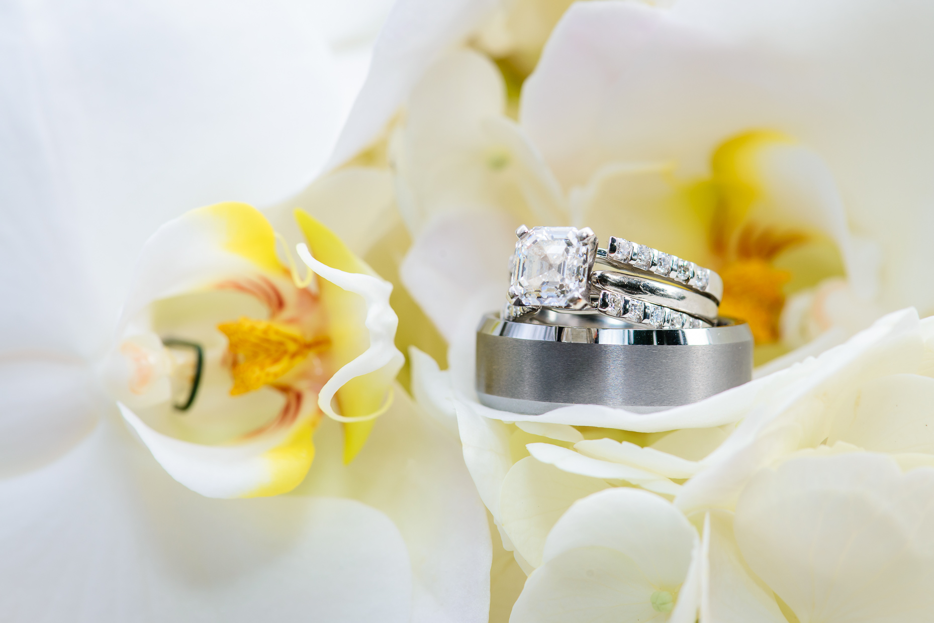 Austin-Wedding-Photographer-hummingbird-house-diamond-ring-orchid