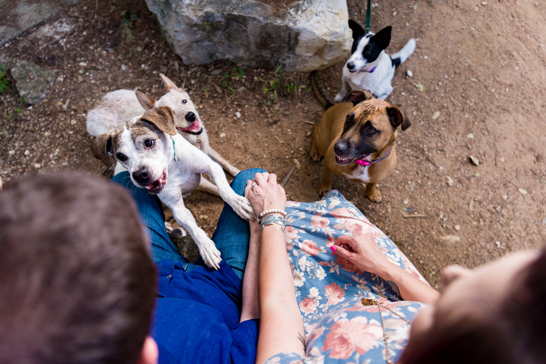 Austin-Wedding-Photographers-engagement-session-dogs-park-holding-hands