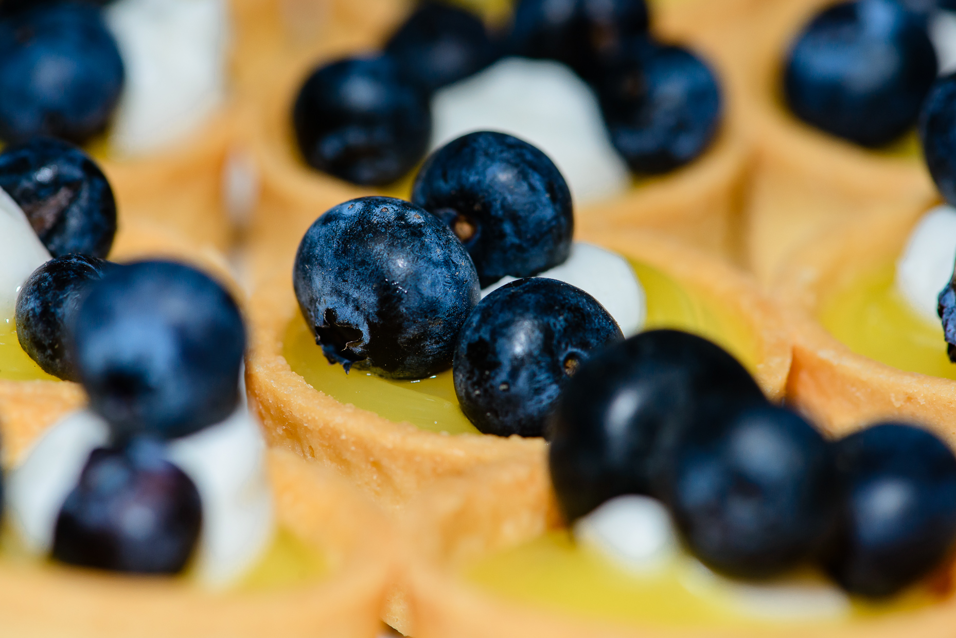 fruit-tart-details-blueberry-austin-wedding-photographer