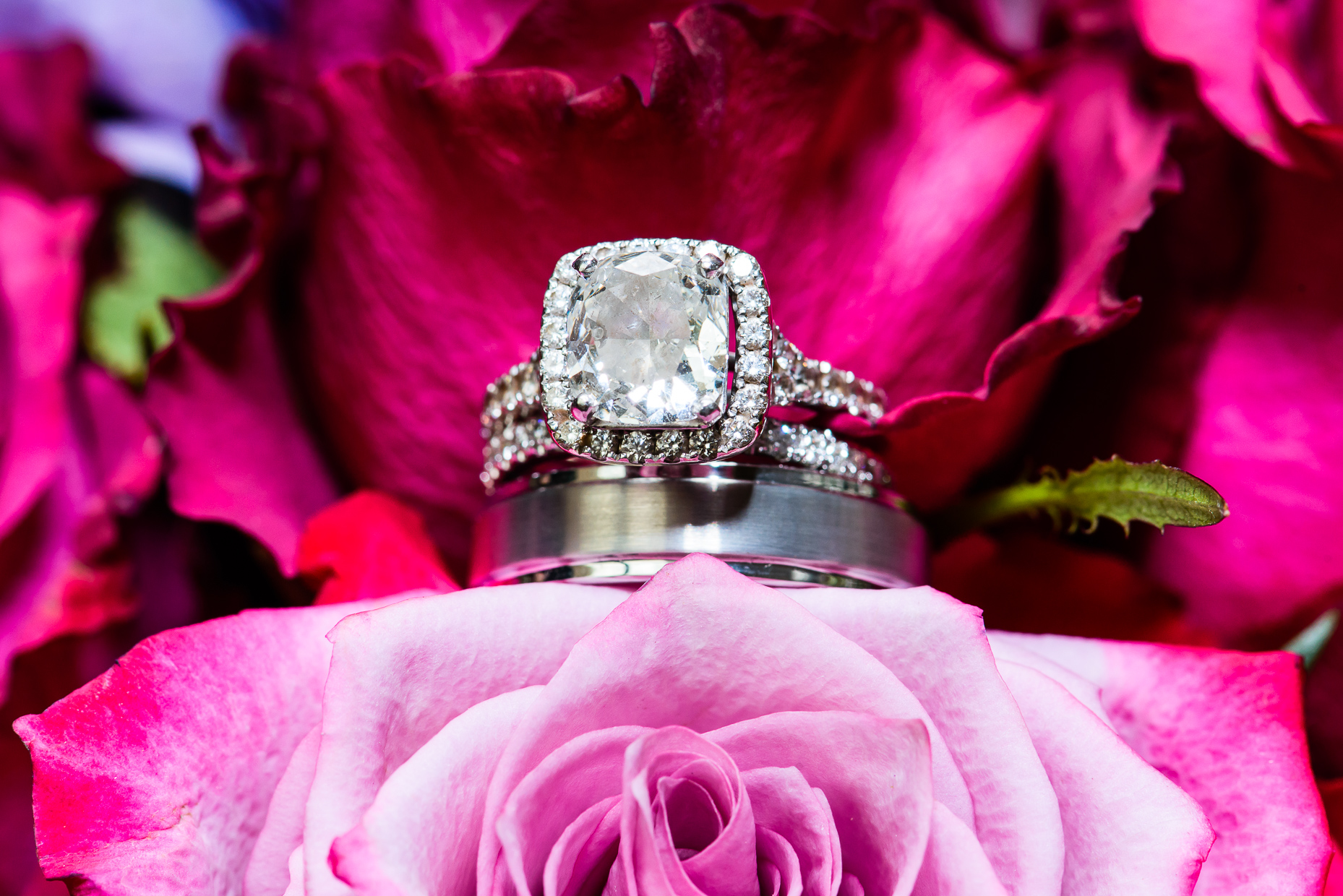 Austin-wedding-photographer-diamond-ring-pink-roses